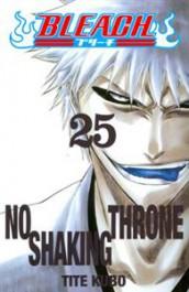 Bleach 25