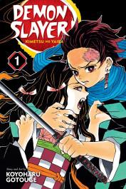 Demon Slayer - Kimetsu No Yaiba 1