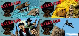 Kalkkaro 88-91 - Harmaasudet