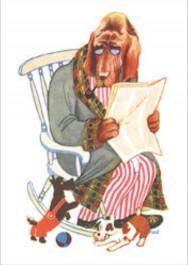 Tove Jansson -postikortti - Koirapappa keinutuolissa
