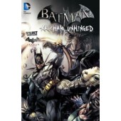 Batman - Arkham Unhinged 2