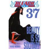 Bleach 37