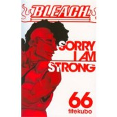 Bleach 66