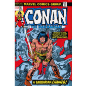 Conan the Barbarian - The Original Marvel Years Omnibus 3 (GIL KANE COVER)