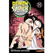 Demon Slayer - Kimetsu No Yaiba 11