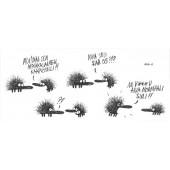 Kiroileva siili -panoramakortti -  Afrikkalainen kääpiösiili