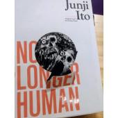 No Longer Human (K)