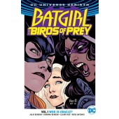 Batgirl and the Birds of Prey 1 - Who Is Oracle?